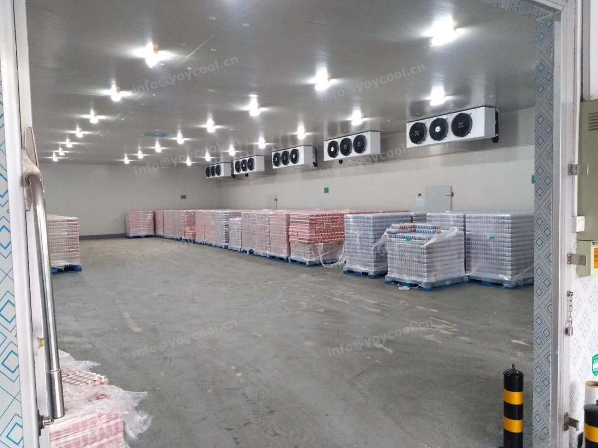 New Zealand milk cold storage room - www.yoycool.cn(13)