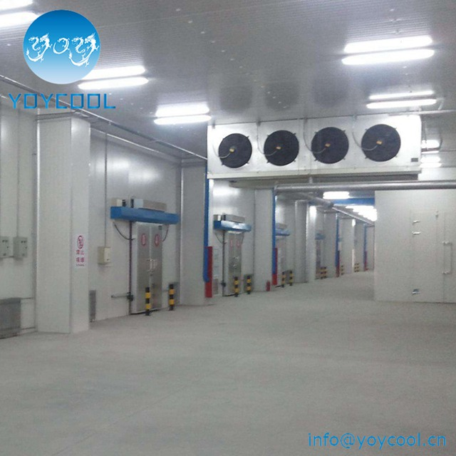 Fruit And Vegetable Cold Room