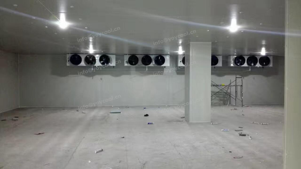 DUBAI COLD ROOM 1_副本