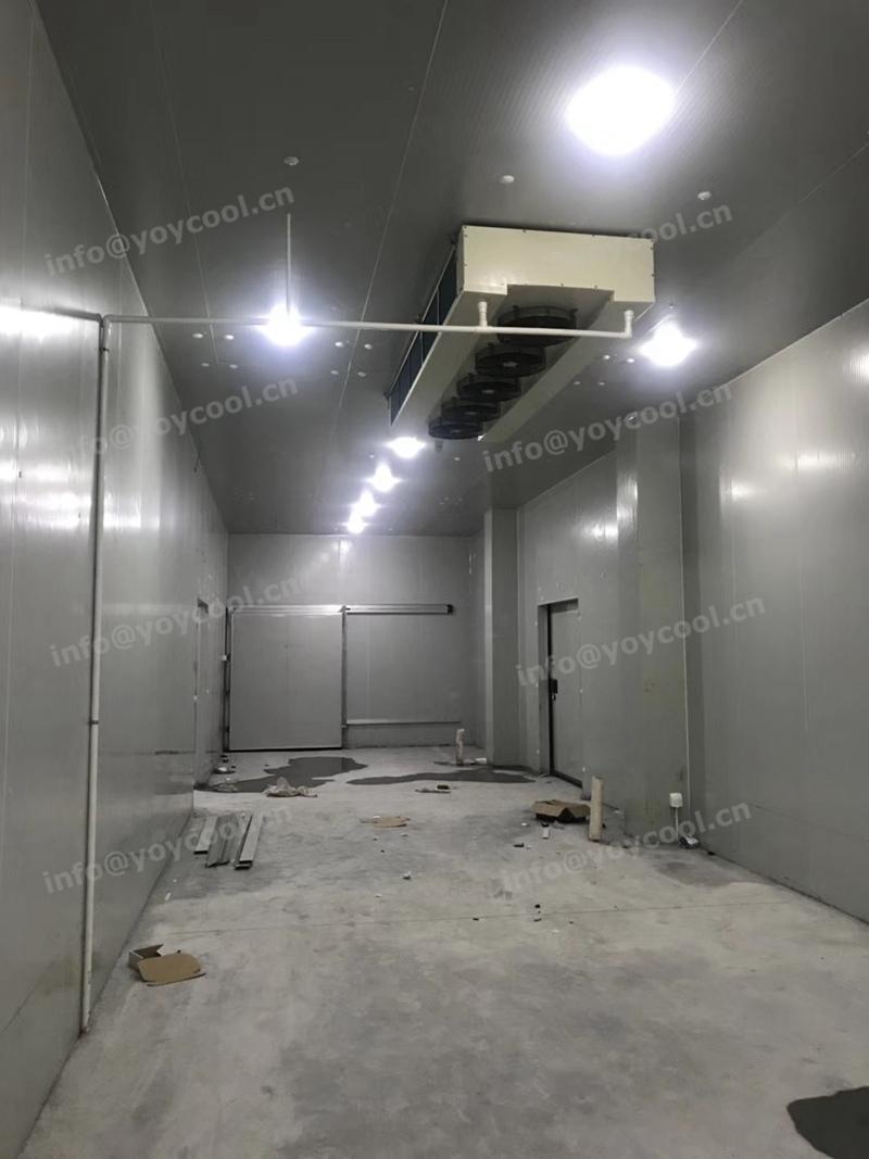 www.yoycool.cn- USA cold room 6